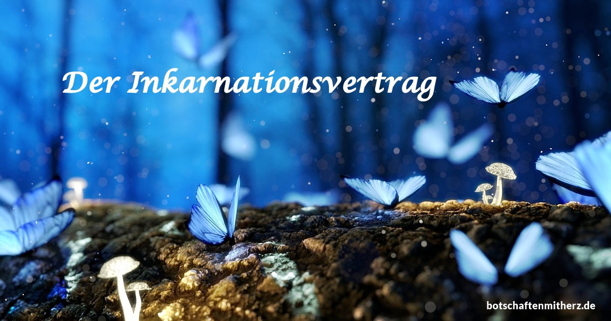 Der Inkarnationsvertrag