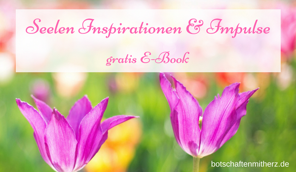 Seelen Inspirationen und Impulse – E-Book